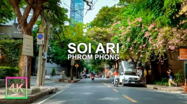 Unseen Green Street of Bangkok Driving Tour with Clear Sound (พานั่งรถเที่ยวสุขุมวิท26)